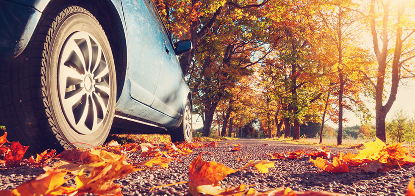 Vehicle Maintenance Tips To Do In The Fall